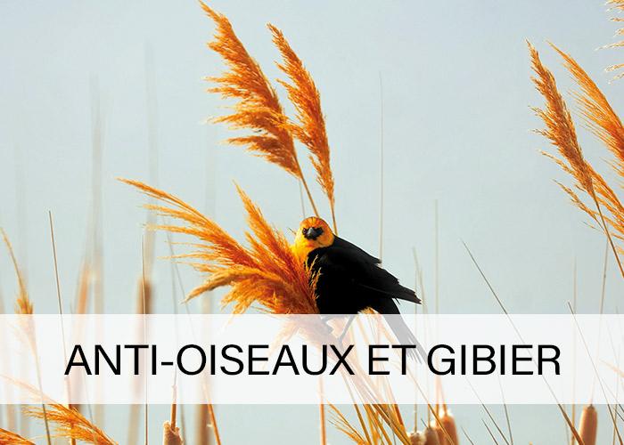 Anti-oiseaux-et-gibier