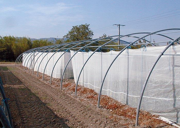 Cage-suspendue- anti-insectes